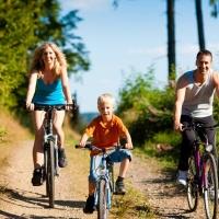 Małopolska na rowery